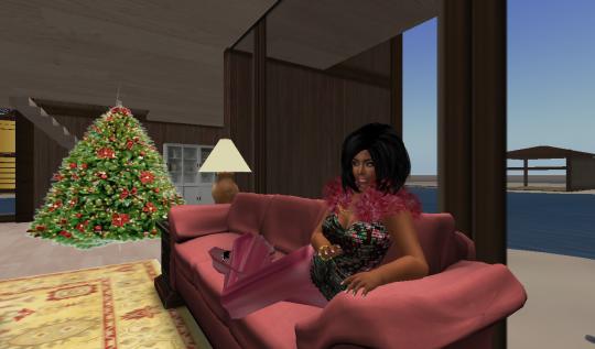 pinkhouse6_001